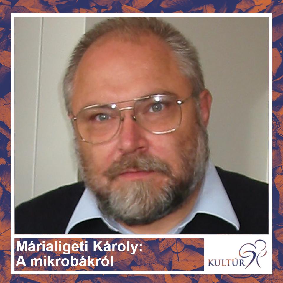 Márialigeti Károly: A mikrobákról